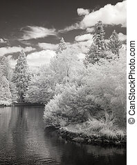 Infrared photo of the duck pond at Laurelhurst Park in...