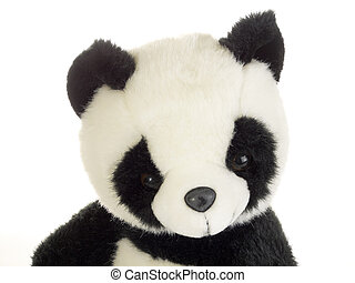 Panda bear - Cute stuffed animal on white background