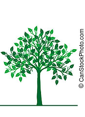 Illustration of a green tree
