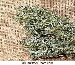 medicinal, planta