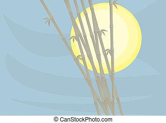 Sun bamboo