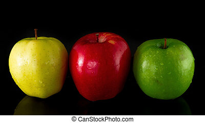 Tree Apples - Red, Yellow and Green Apple on a black...