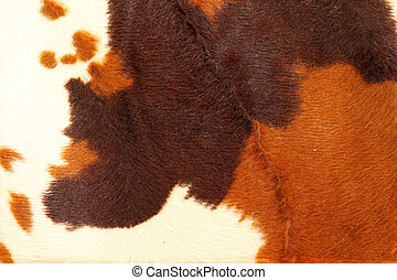 Cowhide - Cow hide pattern background in brown tone