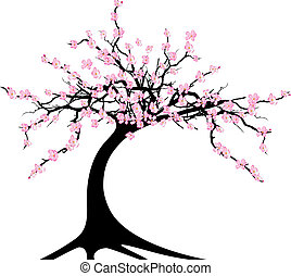 cherry tree - vector illustration of the cherry tree on...