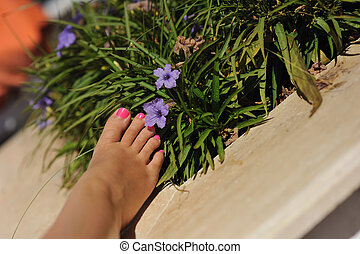 Female foot - Beautiful female foot with a pedicure near...