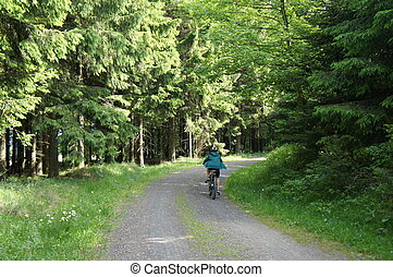 With the bike through the forest - A boy rides his bike on a...