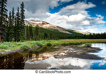 Mountain panorama with small lake at the icefield parkway