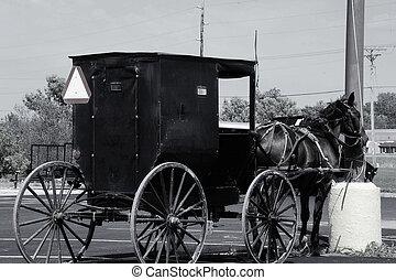 Black & White Amish Horse & Buggy - Amish Buggy & Horse -...