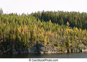 Autumn Forest - Forest in autumn colours by a mountain lake....