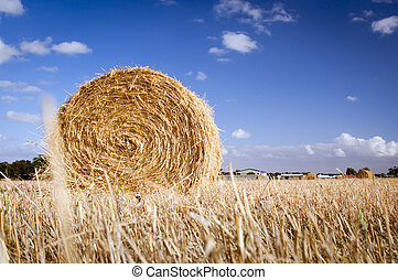 Hay Bales - Bales of hay in the fields in summer time...