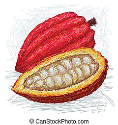 cacao pod opened - closeup illustration whole and opened...