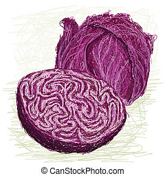 red cabbage cross section - closeup illustration of fresh...