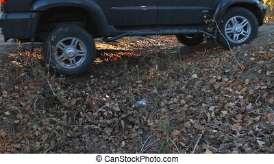 SUV drives through a ditch in the woods