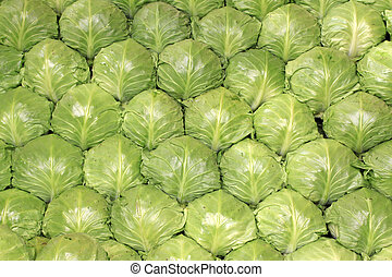 kohlrabi neatly arranged, green vegetables are placed in the...