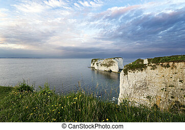 Old Harry Rocks - Chalk sea stacks called Old Harrys Rocks...