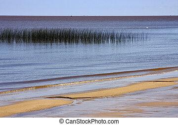 beach and grass in rio de la plata colonia del sacramento...
