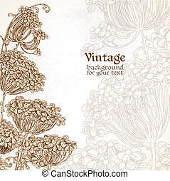 Wild flowers vintage background - Wild flowers - umbrellas...