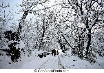 Family walking in snow landscape - winter scenery, Snow on...