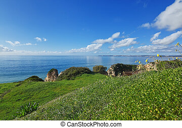 Beautiful sea landscape with grass in the area of ??Portimao