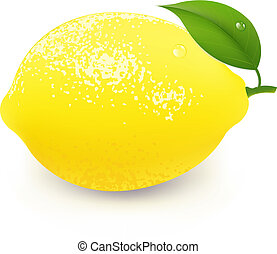 Yellow Lemon With Leaf, With Gradient Mesh, Isolated On Grey...