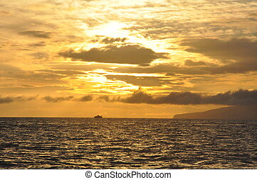 Whale Watching at Sunset in Hawaii