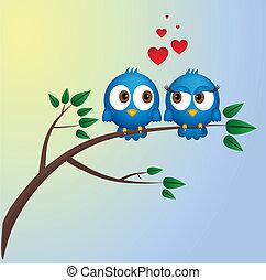 szeret, két, madarak