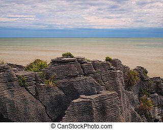 Sedimentary Rocks New Zealand