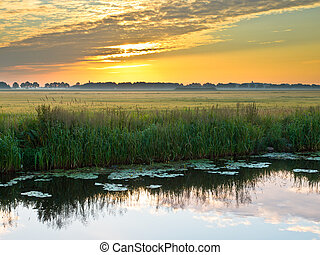 River at dusk - Canal in the Morning in Rural Area in the...