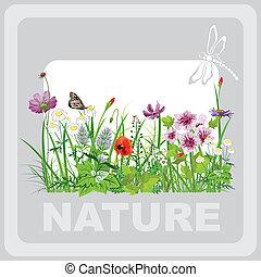 Green grass and flowers, landscape natural, banner in vector...