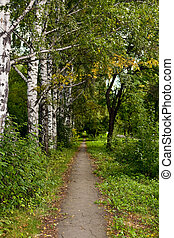 Park path 3 - The picture is made during walk on a botanical...