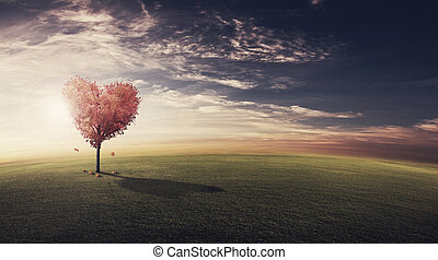 Heart shaped tree in the middle of grassy field