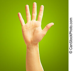 Human Hand On Green Background