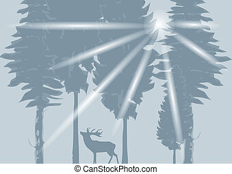 Deer in the gray wood