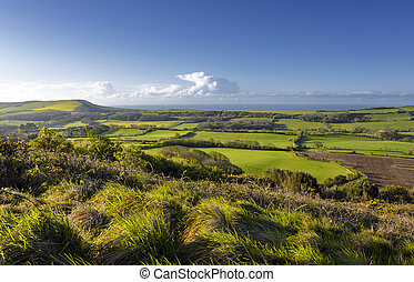 Dorset Countryside - View of the Dorset countryside from the...