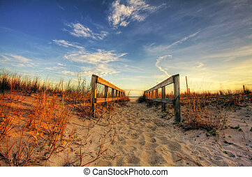 Boardwalk - Beautiful landscape with boardwalk towards the...