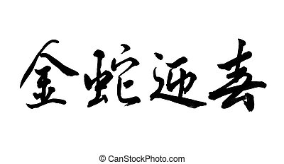 Chinese Calligraphy mean 2013 Year of the snake