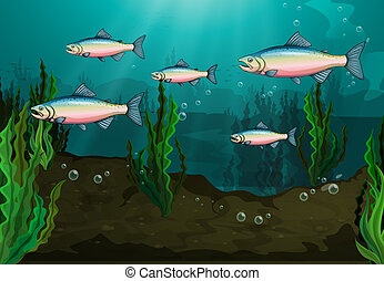 A school of fish - Illustration of a school of fish...