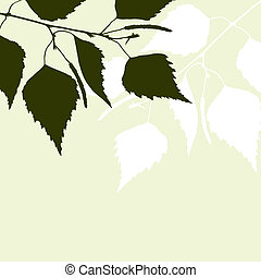 Fresh background of green birch leaves