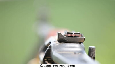 On a hunt - Close-up on a gun aimed at flying birds