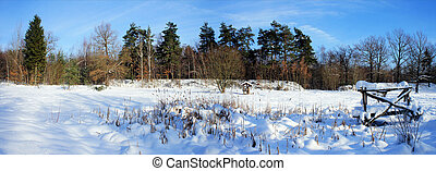 Panorama in winter - Panorama of a idyllic winter landscape;...