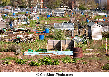 City gardening allotment - city gardening allotment with...