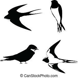 燕子, 矢量, outline, 黑色半面畫像