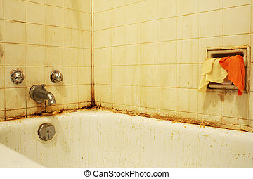 Dirty Bath III - A filthy bathtub with mold and stains and...