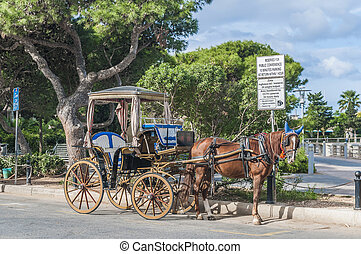 Horse-drawn Buggy in Mdina, Malta - Horse-drawn Buggy...