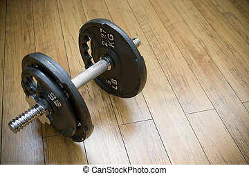 Free weight Dumbells - A free weight dumbbell sitting on a...