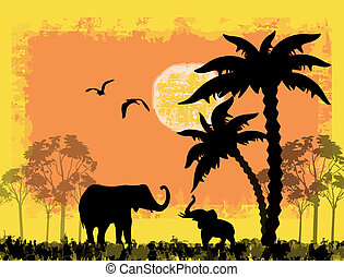 African safari theme with elephants against a grunge...