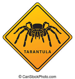 tarantula sign