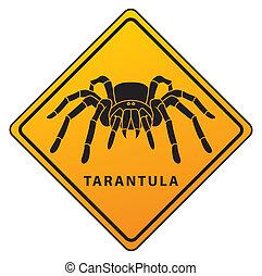 tarantula sign