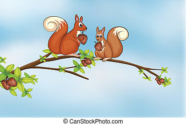 Squirrels - Illustration of squirrels sitting on a branch