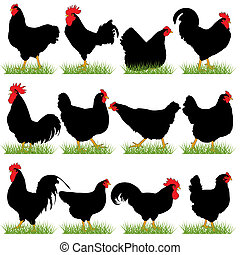 12 Roosters and Hans Silhouettes Set